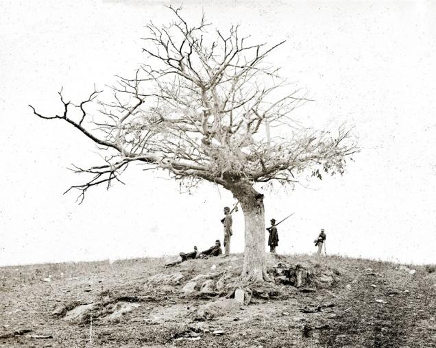 Antietam Battlefield, 1862, taken by Alexander Gardner.